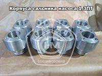 Korpusa_salnyka_nasosa_13PT